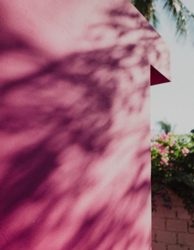 Pink_Shadows